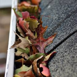 Clogged gutters filled with fall leaves  in Somerville
